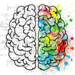 Gehirnforschung: 80% der Menschen können besorgniserregende Meldungen überhaupt nicht verarbeiten