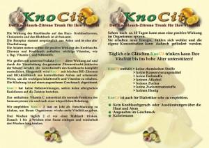 KnoCIt Flyer Back