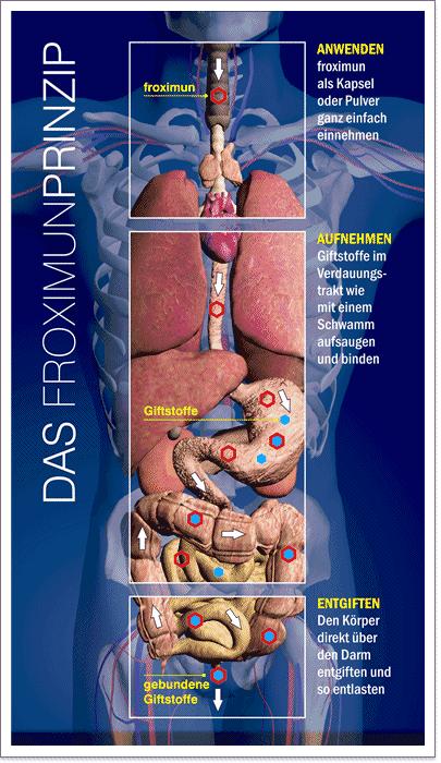 Körperentgiftung für Mensch und Tier